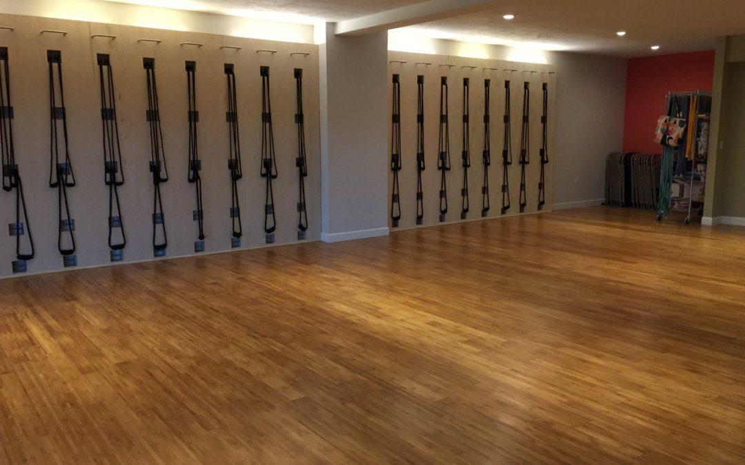 Iyengar Yoga Studio Opens in St. Pete Fl