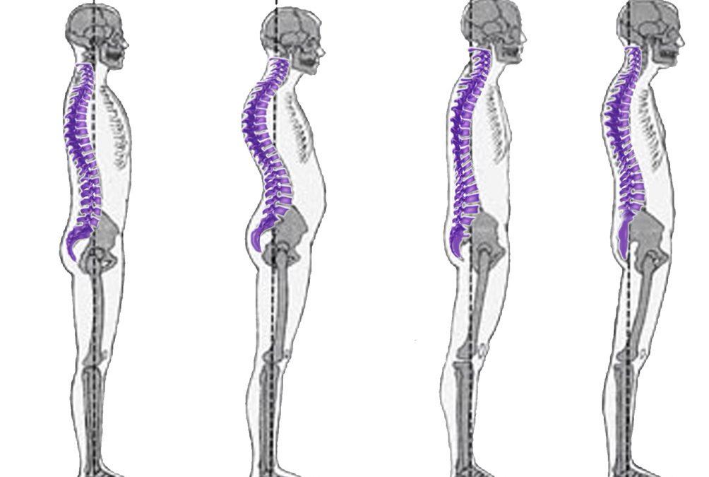 The Asymmetric Body